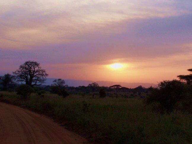 Serengeti Sunset 2
