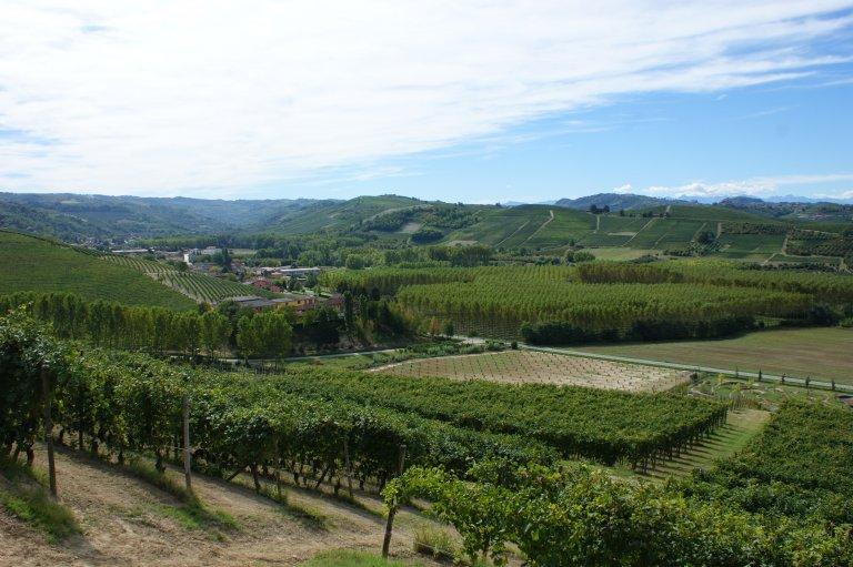 Uitzicht bij Grinzane Cavour