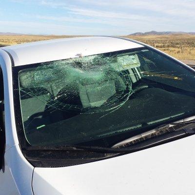Voorvertoning Plaats delict; U89 Wyoming