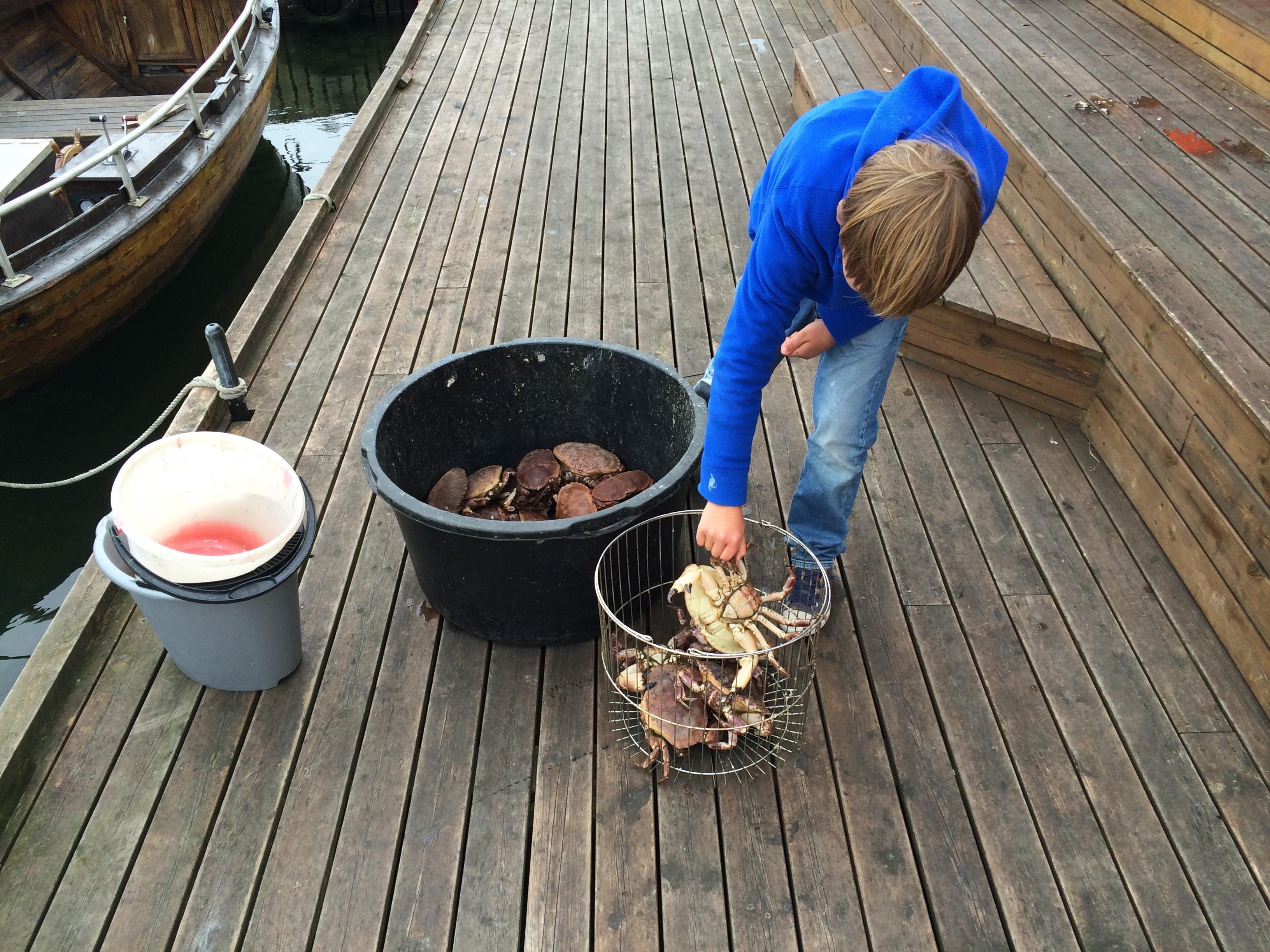 Verse krab in Noorwegen