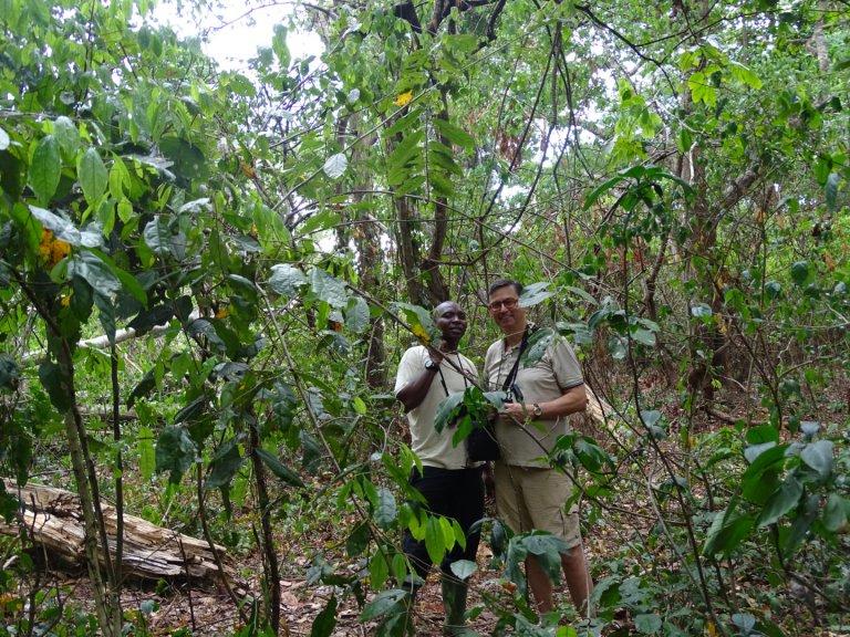Hoofdfoto bij reisverhaal 'Wandelsafari in Magombera Forest '