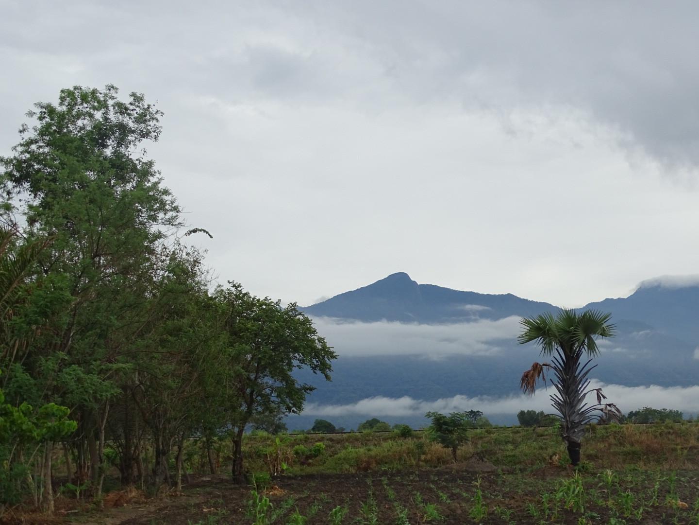 Uitzicht op Udzugwa Mountains