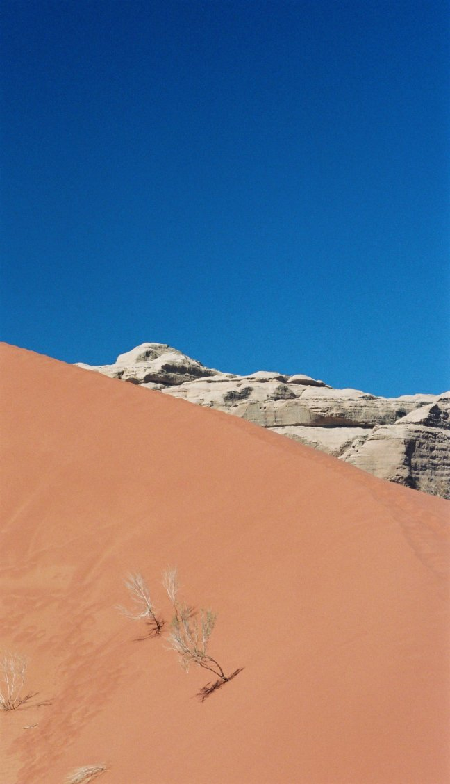 Zandduin in Wadi Rum