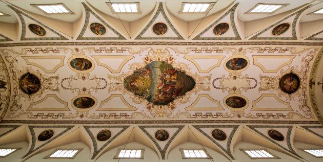 Plafond Kathedraal van St. Louis