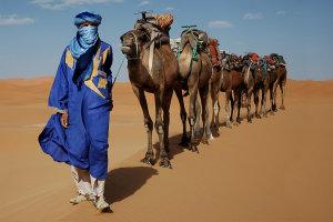 blauwe man en zijn dromedarissen