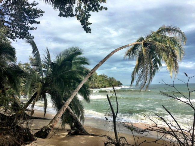 Een van de mooiste snorkel-locaties in Costa Rica!
