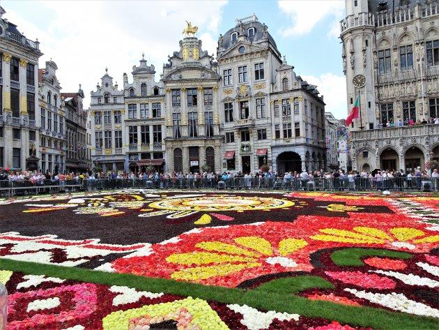 Bloementapijt op Brussels Grote Markt