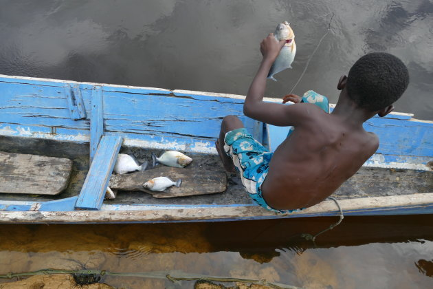 Piranhas vangen in de jungle van Suriname