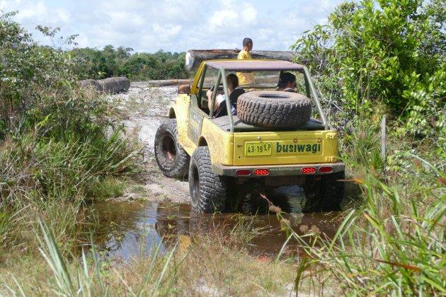 Met een busiwagi over de savanne