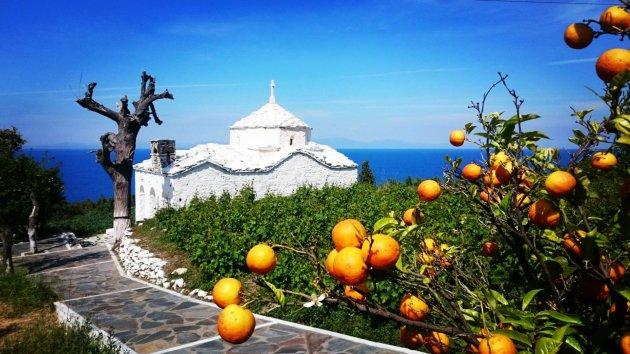 Sinaasappels op Samos