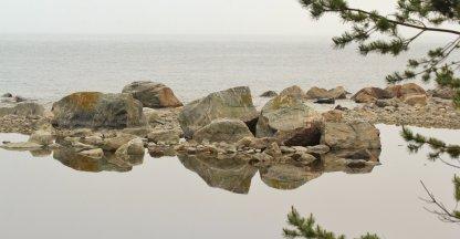 Baltische zee