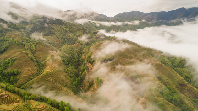 Rijstterrassen van Longji