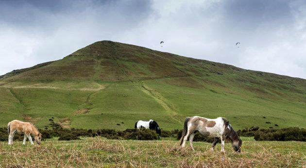 Hay Bluff langs Offa's Dyke