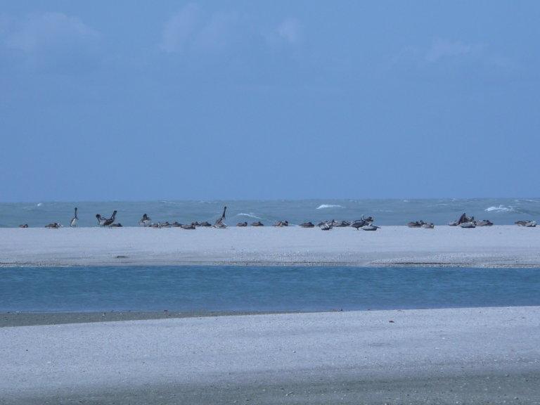Hoofdfoto bij reisverhaal 'Rondreis op de Yucatan: 3, van Campeche naar Villahermosa'