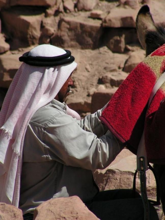 gerookte kameel