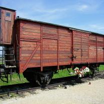 '356725' door marjolijn