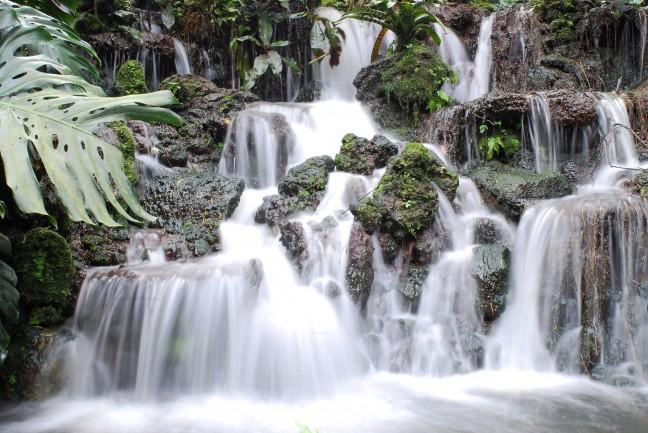 Waterval in botanische tuinen Singapore