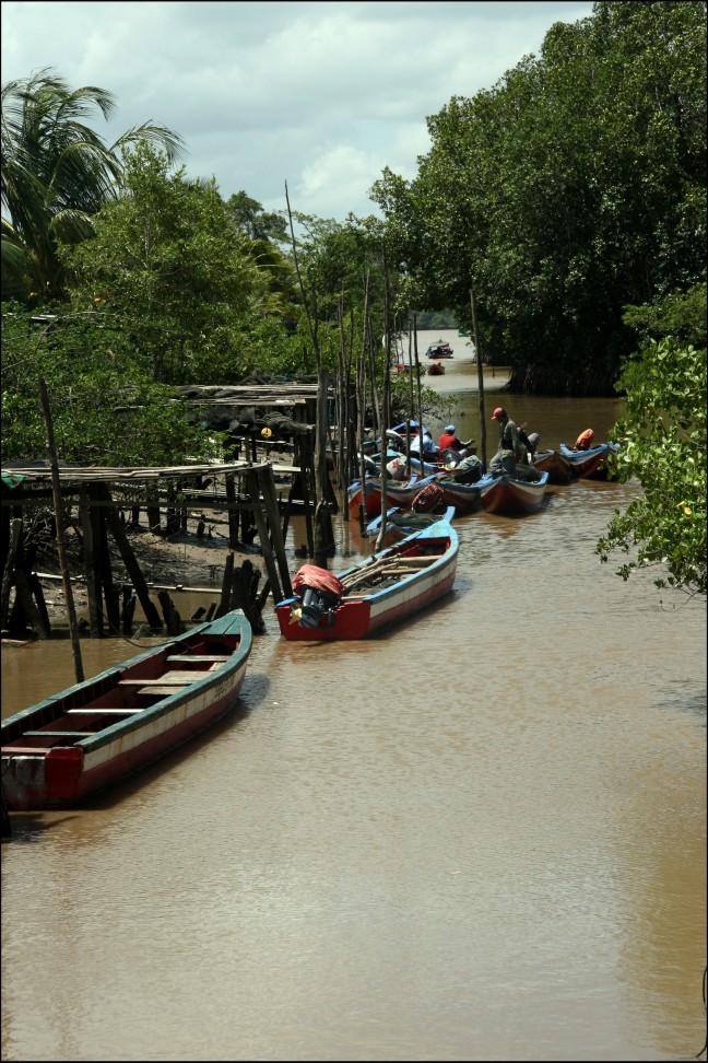 Paramaribo1