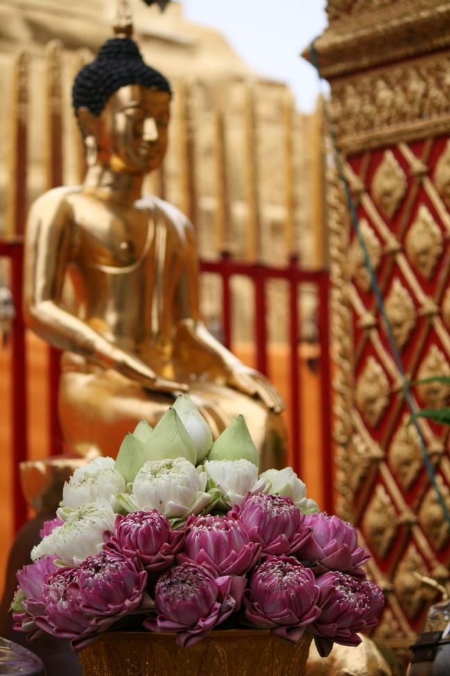 Verse bloemen voor Boeddha