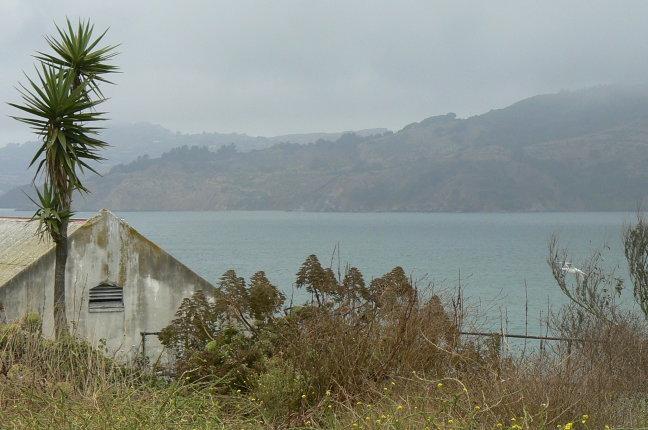 exotisch Alcatraz
