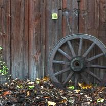 '427835' door fandries