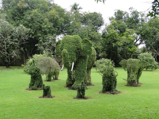 Groene olifanten
