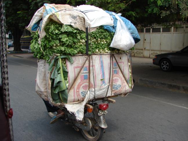 Vegetable transport