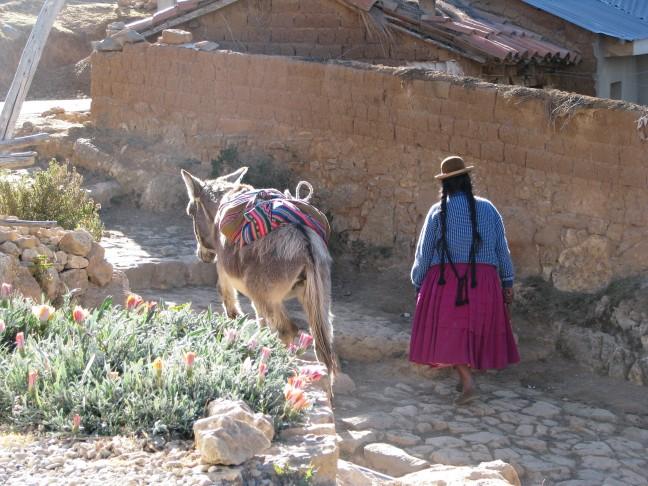 Vrouw met ezel