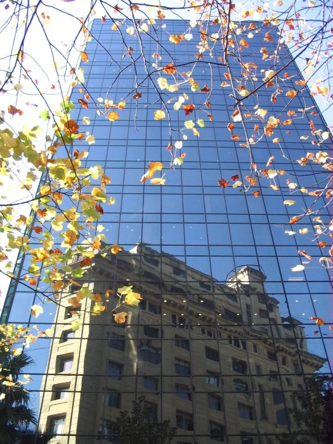 Herfst in Nueva York