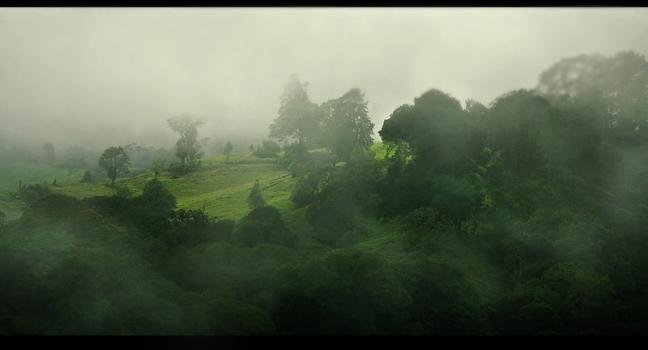 In de mist...........