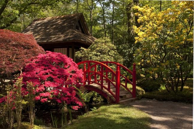 Park Clingendae  Japanse tuin l