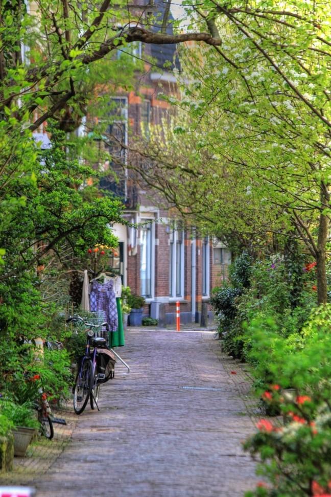 Haarlems Steegje