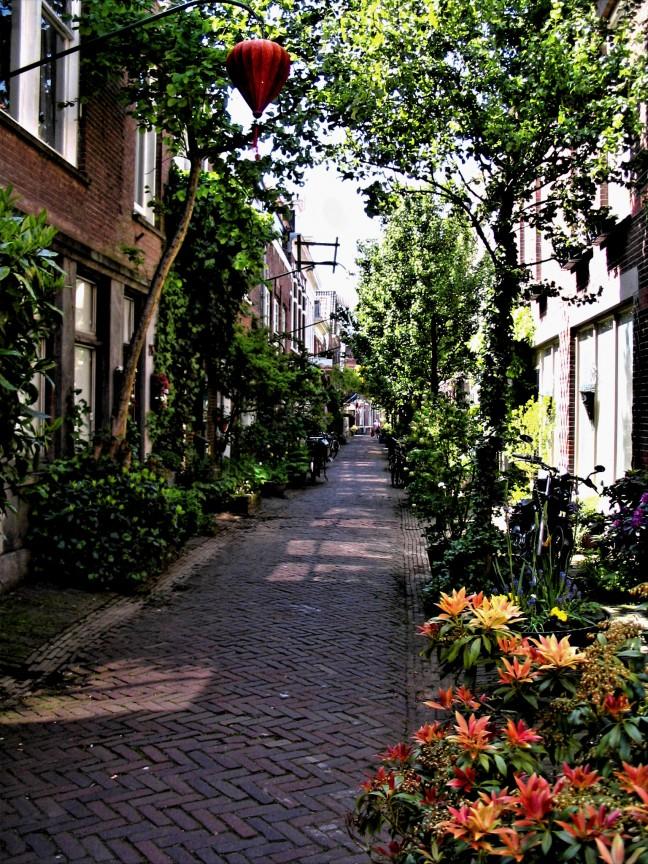 Het mooiste straatje van Haarlem