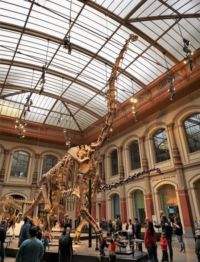 Grootste Dino-skelet ter wereld