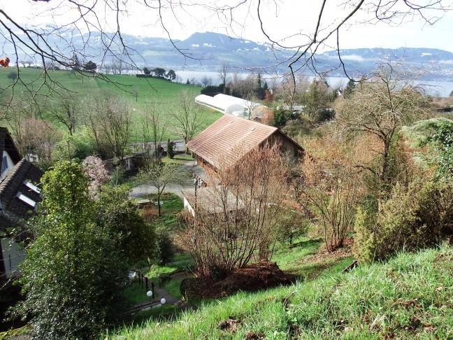 Synergy Village - Zwitserland - op ontdekkingstocht door de achtertuin