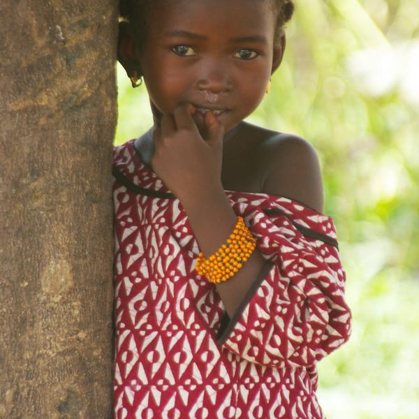 '503079' door afrika