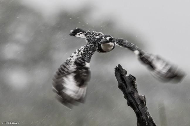 regen en wind in Zimanga GR