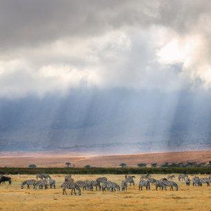 Ngorongoro krater: ga als eerste naar binnen