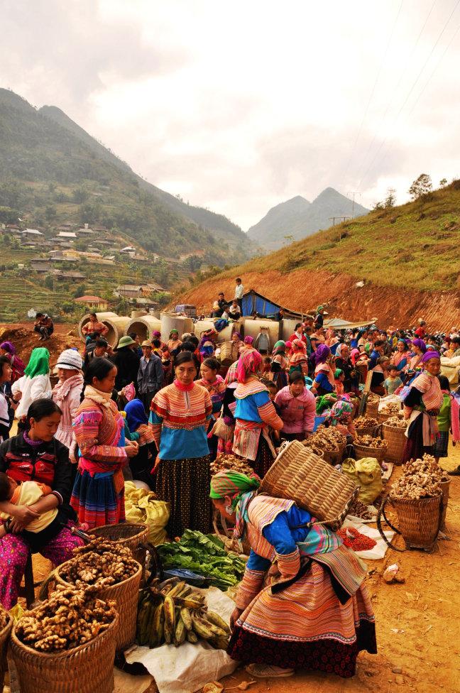 Vietnamese gember