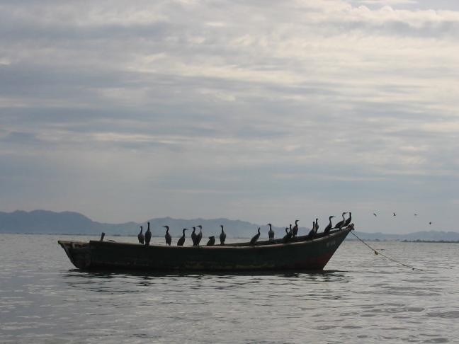 Lake Victoria.