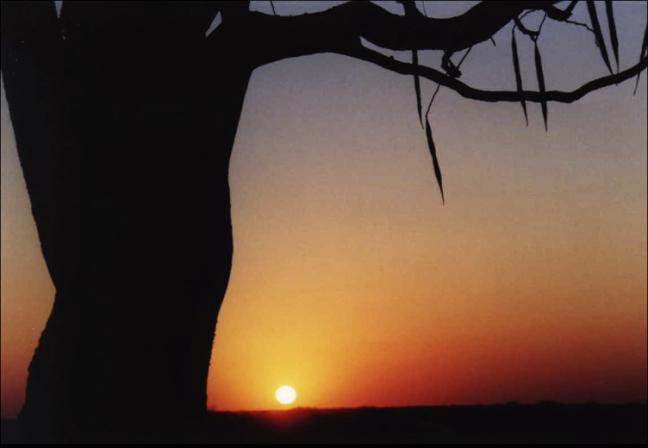 zonsondergang in Etosha