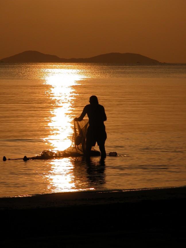 Vissen in de Mekong-delta