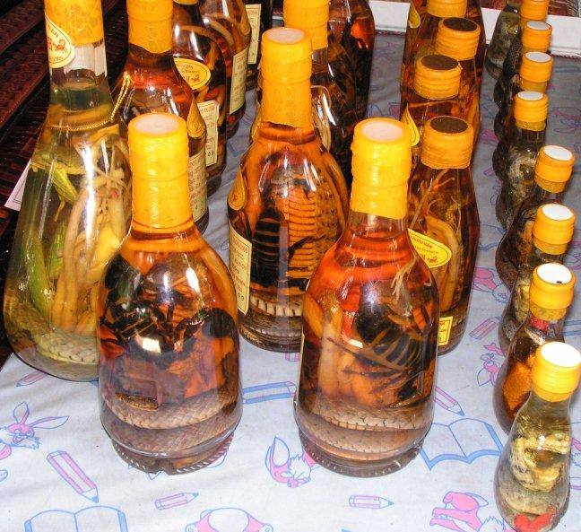 beestjes in fles