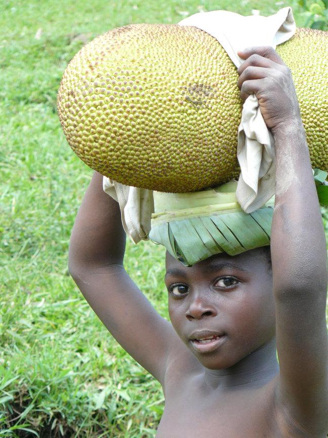 Jackfruit met kind...