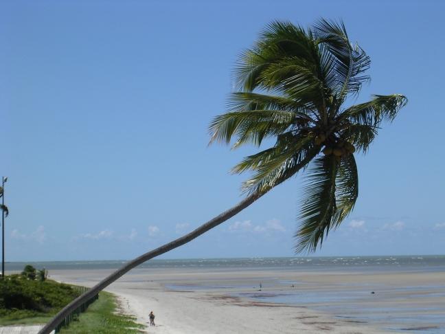 Strand ten noorden van Recife