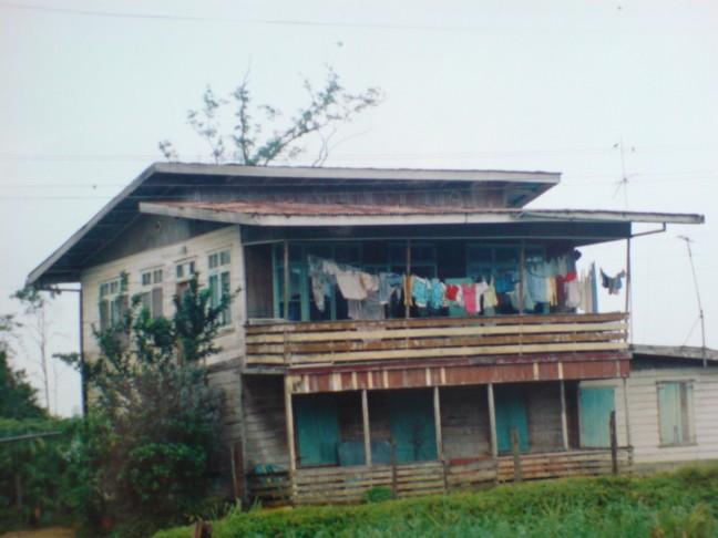 2001-2002 Plantage Zorgvlied