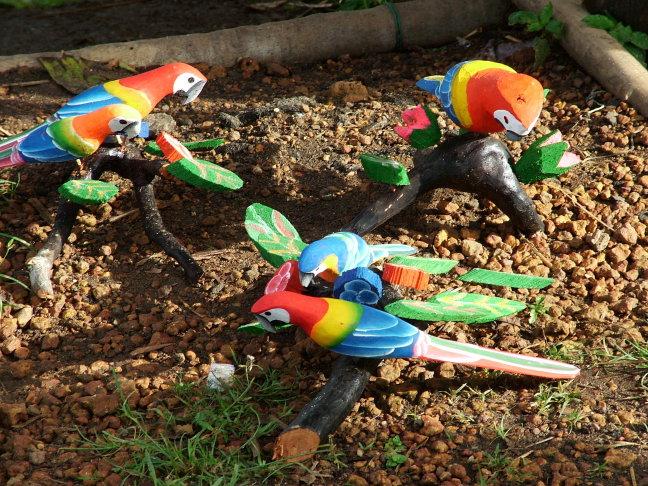 Zwijgende papegaaien