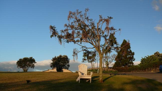 Vredig dorpje Pauani Pines op het Coromandel schiereiland