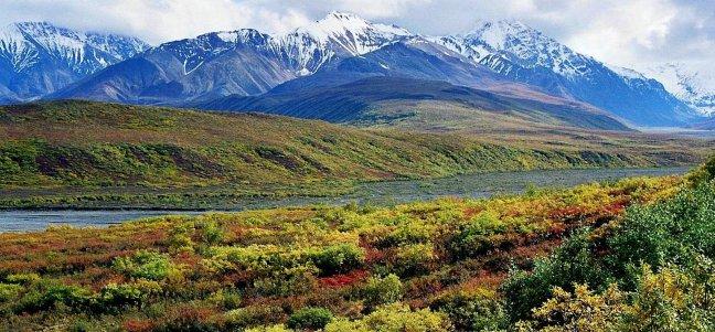 Alaska: Denali Nat. Park