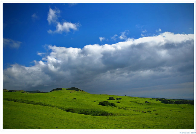 Green, Green Grass of Hawai'i